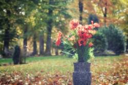 Obsèques : les Français préfèrent la crémation à l'inhumation