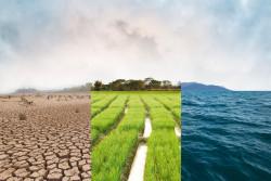 Marche du sièclepour le climat ce samedi 16 mars