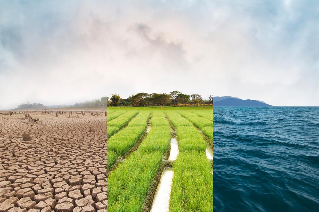 La «marche du siècle» pour le climat aura lieu ce samedi 16 mars