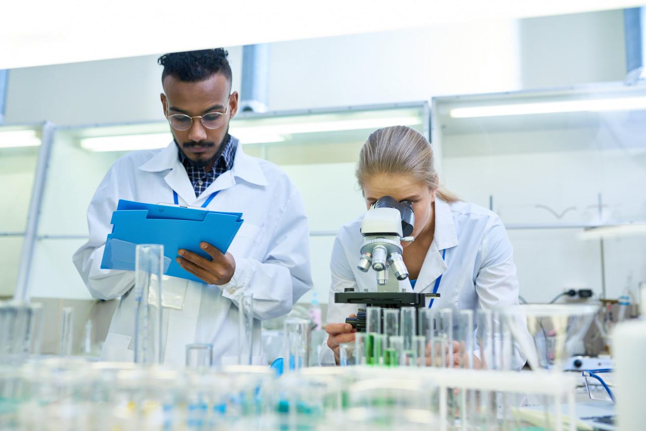 Une «bombe génétique» pour éliminer les bactéries résistantes aux antibiotiques