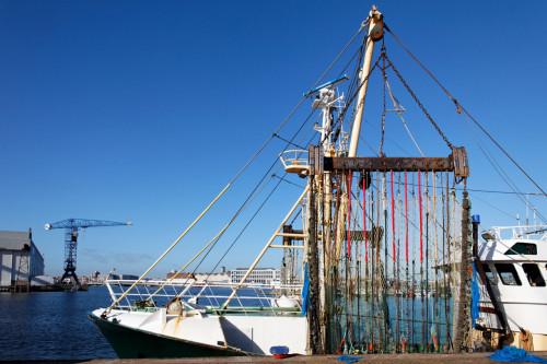 Pêche électrique interdite à partir du 1er juillet 2021 dans toute l'UE