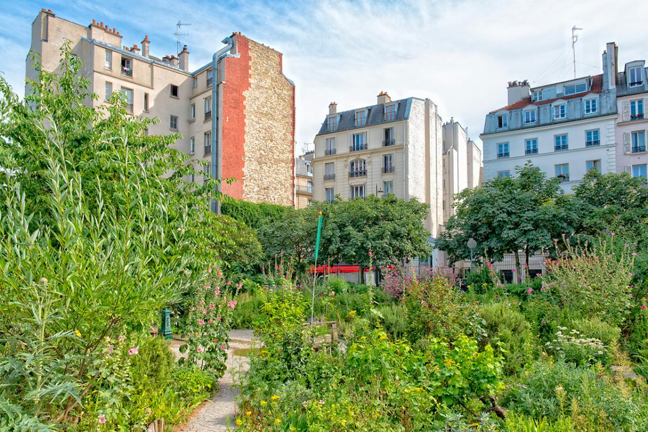 Festival du jardinage : Les 48 h de l'Agriculture urbaine du 3 au 5 mai
