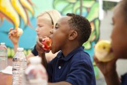 Rapport sur les discriminations d'accès à la cantine scolaire