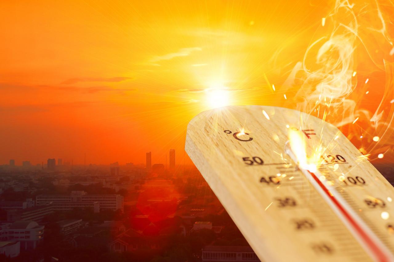 La canicule s'installe en France du 24 au 29 juin : les températures au jour le jour