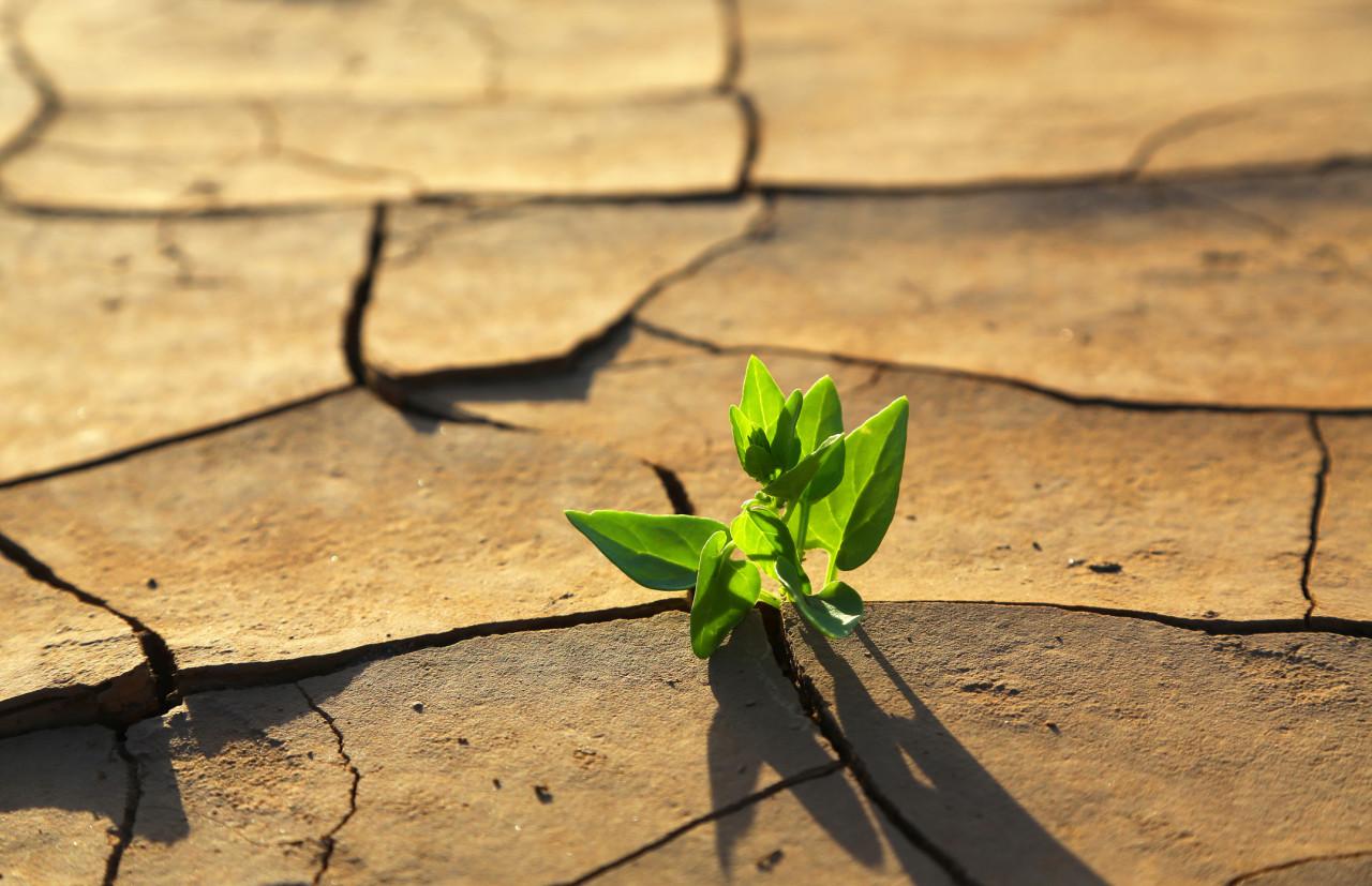 Les préconisations du GIEC pour lutter contre le réchauffement climatique