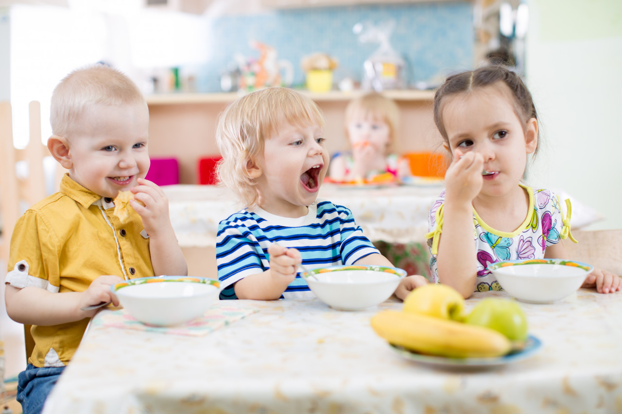 Des assiettes en porcelaine pour lutter contre les perturbateurs endocriniens dans les crèches de Limoges