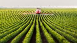 Épandages de pesticides: Une consultation publique en ligne jusqu'au 1er octobre