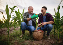 Un agriculteur peut-il céder son bail à son fils?