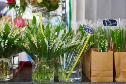 Vente de muguet interdite aux particuliers le 1er mai et fermeture des fleuristes