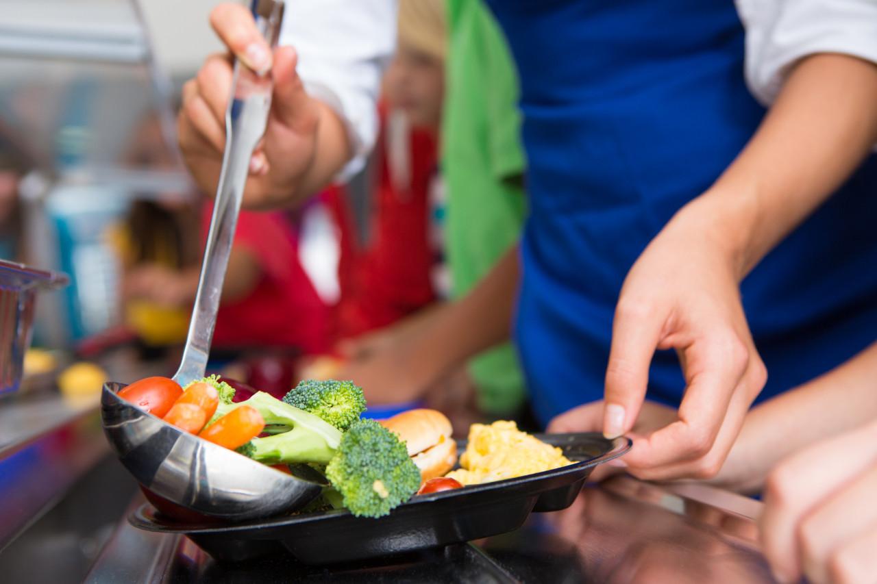Alimentation durable: l'appel à projets de l'ADEME pour les cantines scolaires