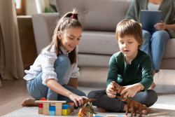 Une nouvelle Charte pour une représentation mixte des jouets