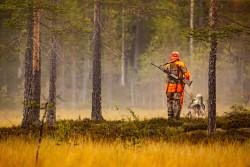 Confinement : des dérogations pour les chasseurs