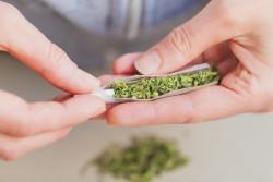 Cannabis récréatif : l'Assemblée nationale demande l'avis des citoyens