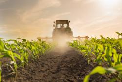 Allocation de remplacement pour les non-salariés agricoles