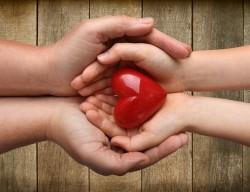 Refuser le don d'organes après sa mort : comment exprimer son opposition?