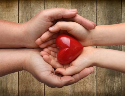 Don d'organe après un décès : de moins en moins de refus injustifiés