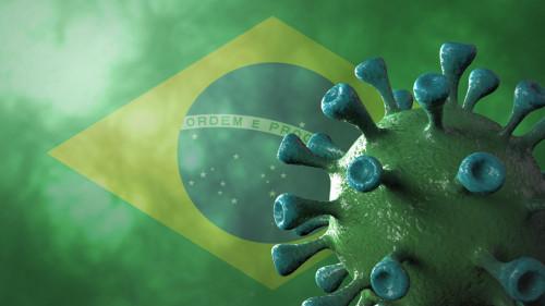 Covid-19 : ce que l'on sait et ce que l'on ignore sur le variant brésilien