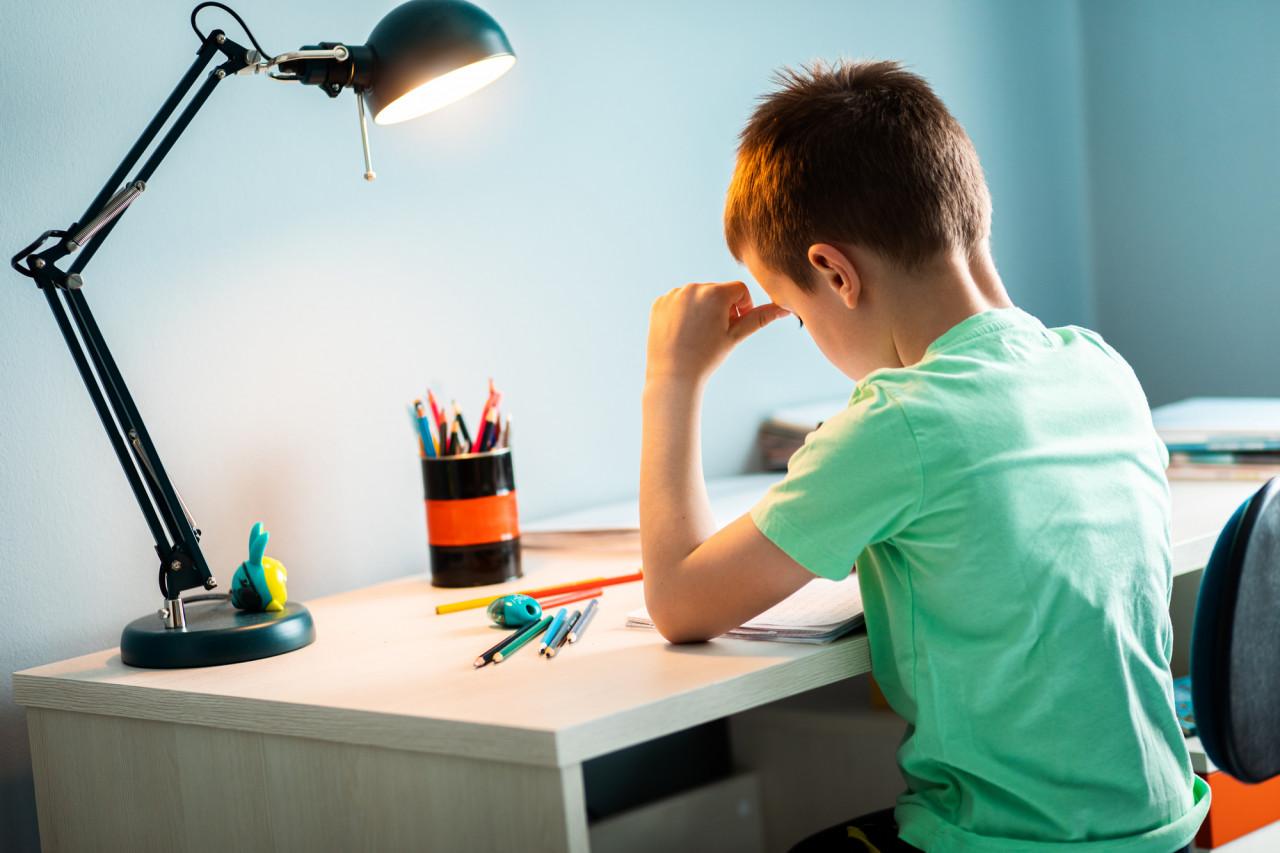 En primaire, les devoirs à la maison sont-ils réellement interdits ?