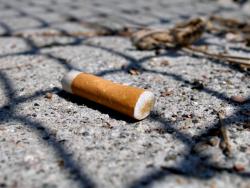 Mégots de cigarette : Bordeaux veut se débarrasser de cette pollution et les recycler
