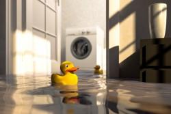 Dégât des eaux exceptionnel dans un bâtiment : le propriétaire ne peut pas réclamer l'annulation de son achat immobilier