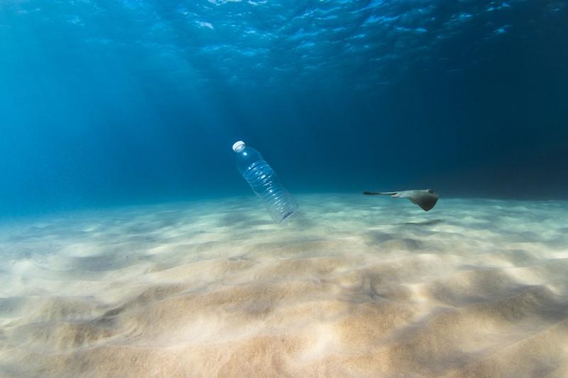 Pollution plastique en Méditerranée, le WWF tire la sonnette d'alarme et propose des solutions