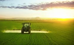 Le glyphosate et ses résidus sont partout : des alternatives existent-elles?