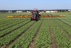 Pesticides : création d'un fonds d'indemnisation des victimes des produits phytosanitaires