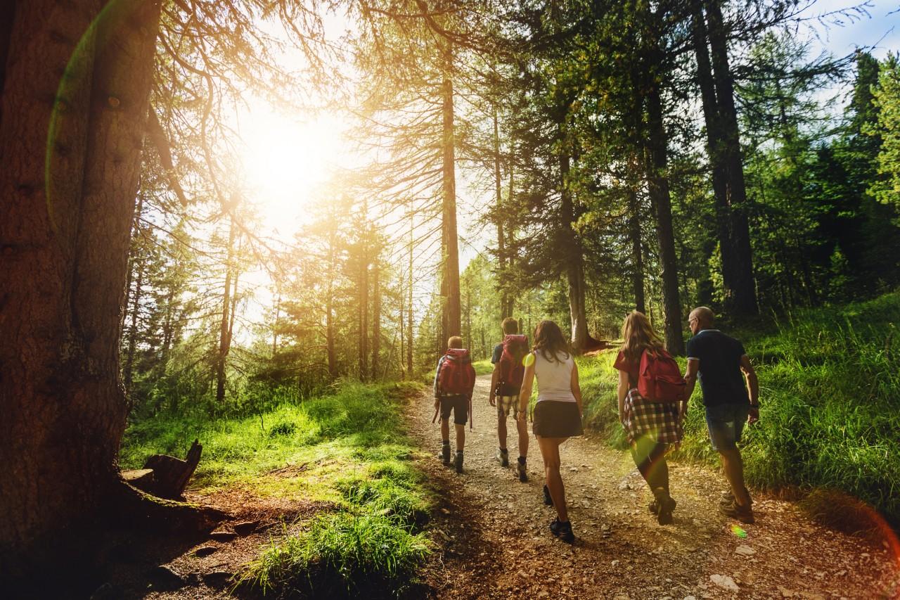 La sécurité en forêt domaniale n'est pas garantie systématiquement par l'Office national des forêts