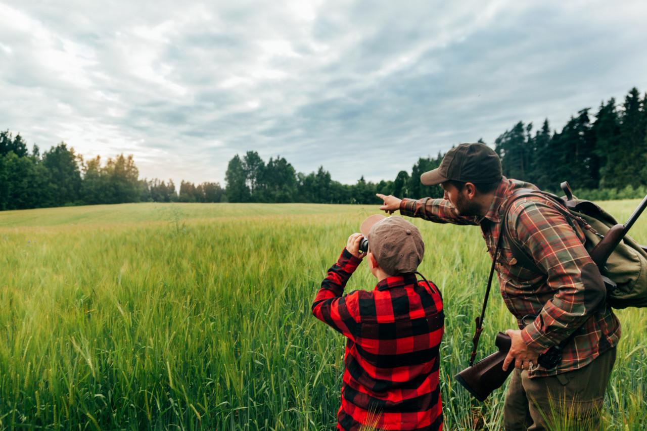 Pratiquer la chasse accompagnée : conditions, demande d'autorisation et sanctions