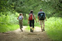 Comment organiser une randonnée pédestre ?