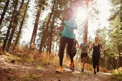 Comment préparer une manifestation sportive ?