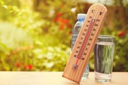 Canicule : risques et solutions en cas de forte chaleur