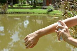 Produits anti-moustiques : sélectionner le bon répulsif pour cet été