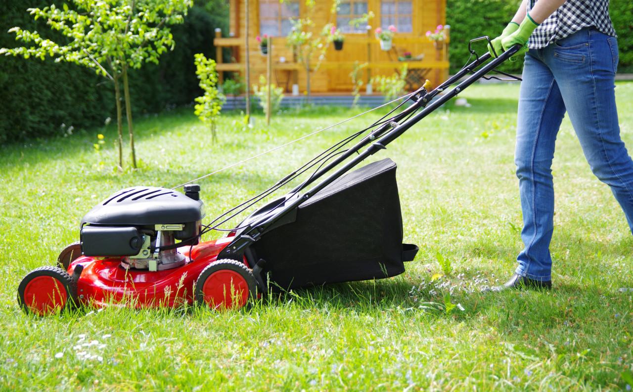 Entretenir son jardin : rappel des règles à respecter