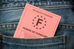 cerfa 14948 01 r f 06 demande de permis de conduire format de l 39 union europ enne. Black Bedroom Furniture Sets. Home Design Ideas