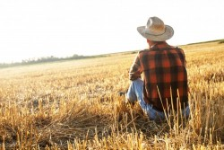Retraite des exploitants et collaborateurs agricoles: conditions et montant de la pension
