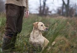 S'inscrire à l'examen du permis de chasse