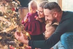 Quel sapin de Noël choisir pour respecter l'environnement?