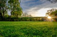 Bornage: fixer la limite entre deux terrains contigus