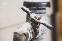 Demander à être indemnisé des dégâts dus au gel