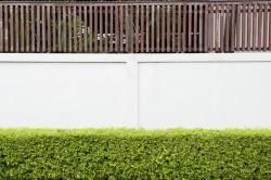 Mur du voisin : comment acquérir la mitoyenneté d'un mur privatif?