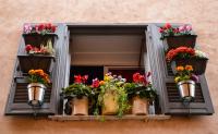 Accrocher sur sa terrasse des pots ou jardinières: quelles sont les règles à respecter?