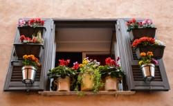 Pots et jardinières suspendus sur son balcon : vérifier les règles de copropriété